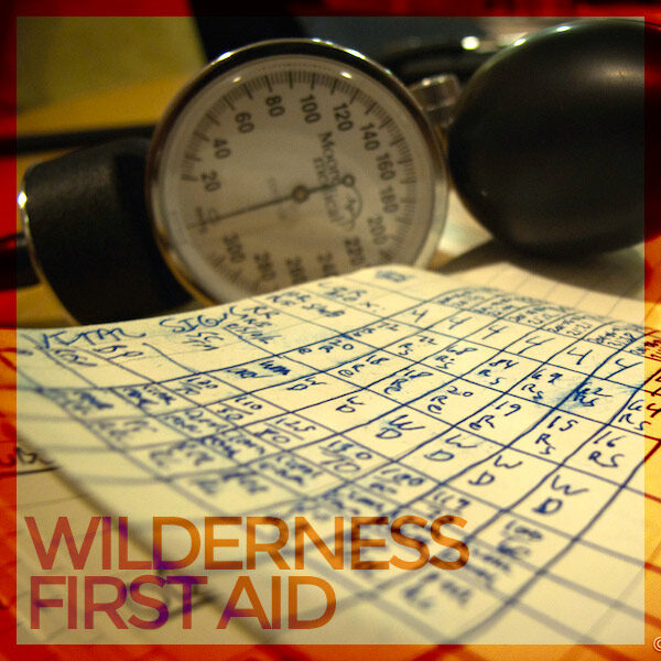 NEW* ASHI Wilderness First Aid and CPR   H2o Dreams